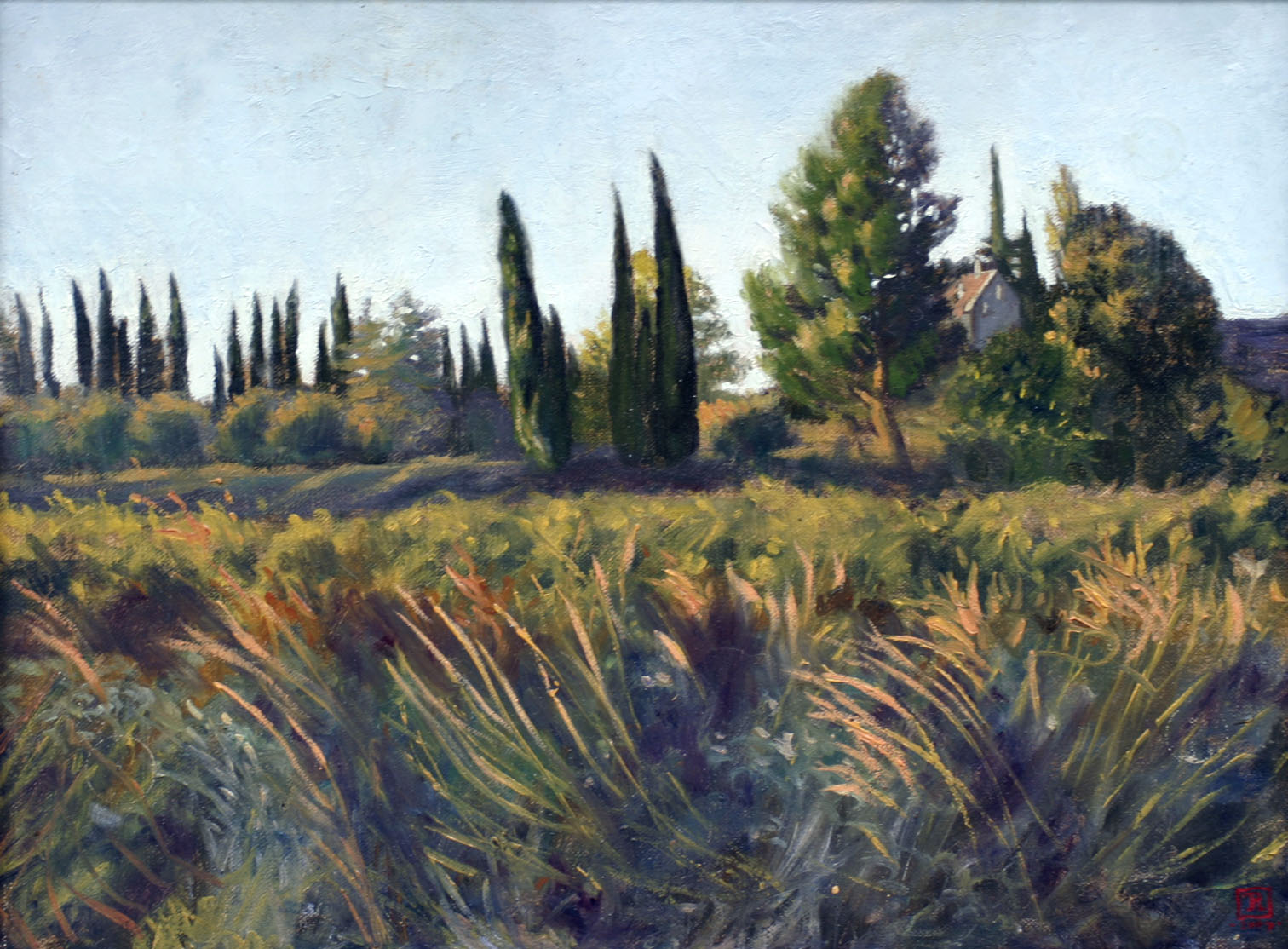 SOLD Among the Cypress Trees, 12x16 Oil by Rebecca King