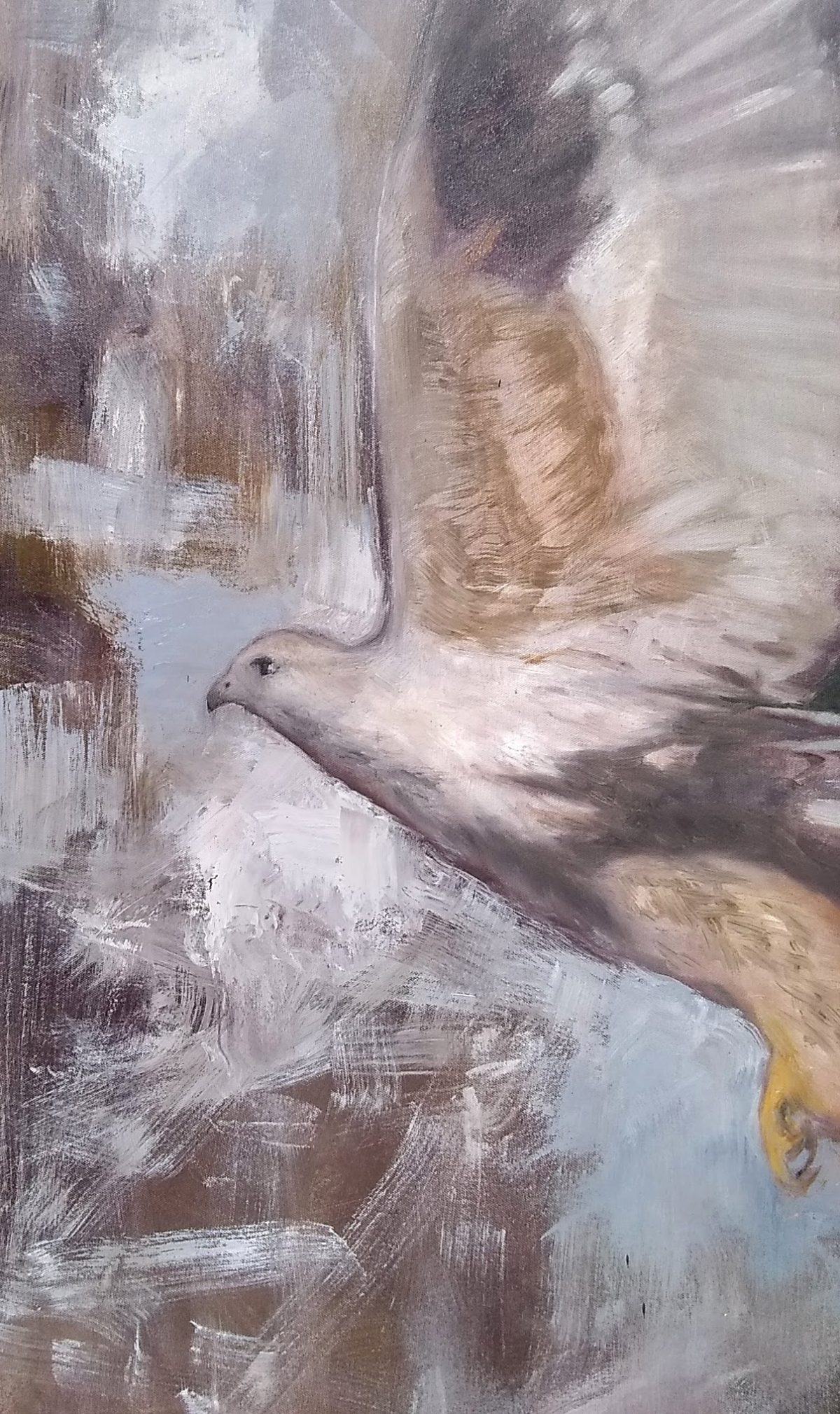 Snap Detail 2 Oil on Canvas 24x30 Rebecca King Hawkinson