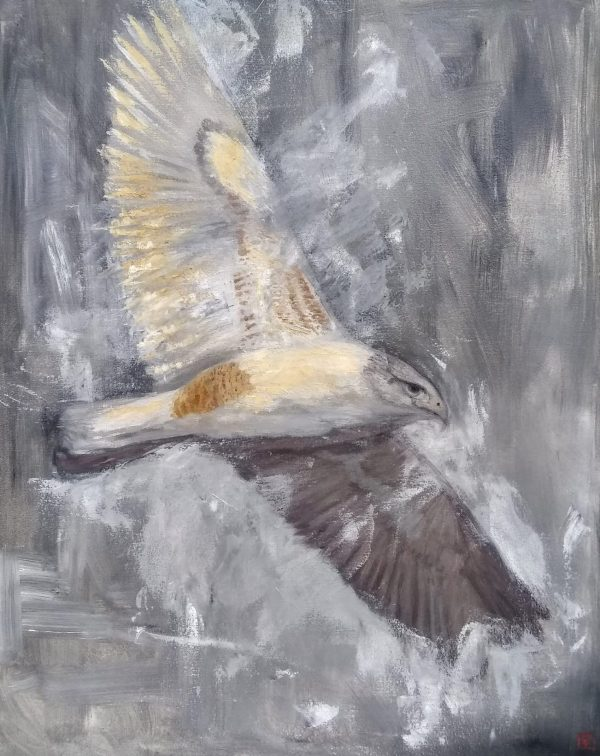 Soar Oil Painting of a Hawk on Gallery Wrap by Rebecca King Hawkinson