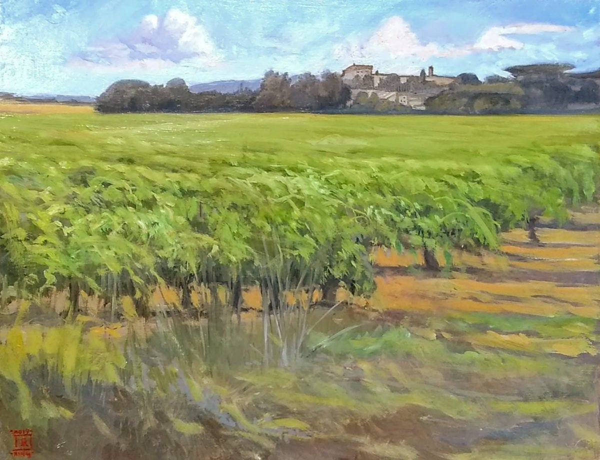 Beyond Uzes Oil on Panel 11x14 Rebecca King Hawkinson