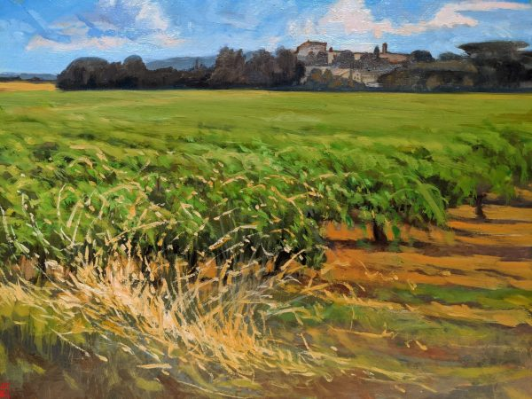 Beyond Uzes Souther France Oil painting on Panel Artist Rebecca King Hawkinson