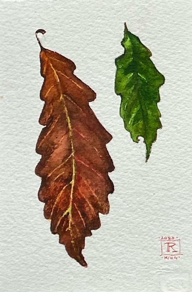 Art Rebecca King a Hawkinson Brown Oak Chestnut