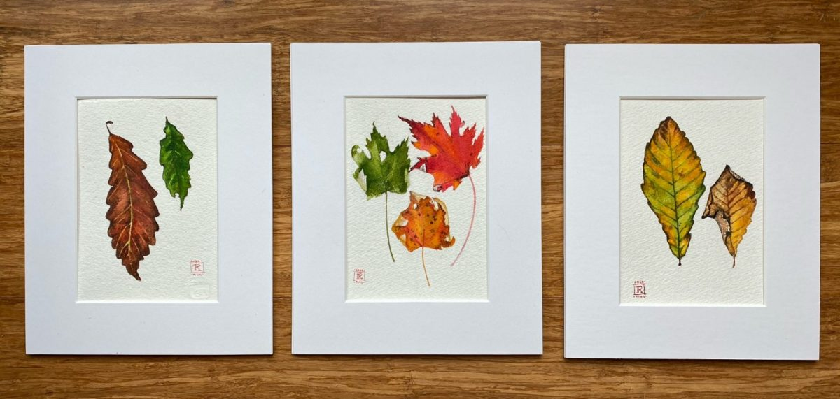 Maple Leaf Painting Art Rebecca King Hawkinson Leaf Set